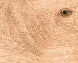 Holzmuster Wildeiche geölt