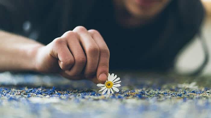 Mann legt eine Blume auf eine Organoid-Oberfläche